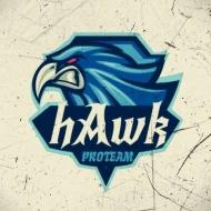 HAWK TEAM